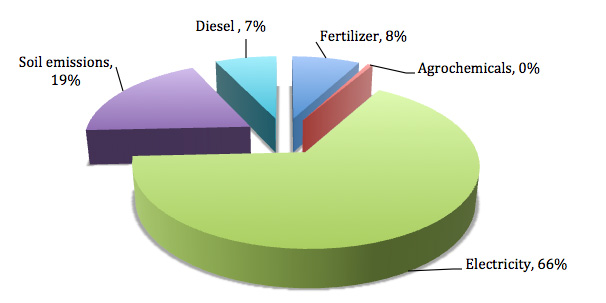 carbon footprinting sources of emissions
