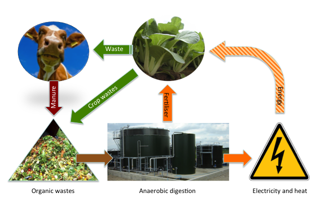 biogas prod diagram