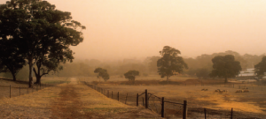 CSIRO climate change report